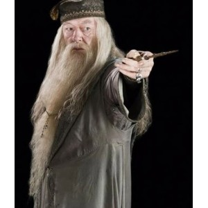 Harry Potter : Albus Dumbledore Professeur Wig Et Barbe Cosplay